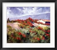 Framed Spring Poppies
