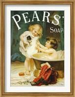 Framed Pears II