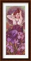 Framed Amethyst