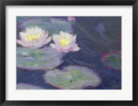 Framed Crop Water Lilies