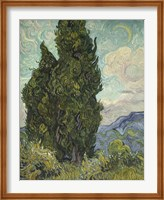 Framed Cypresses