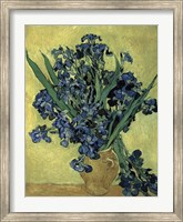 Framed Irises(1890)
