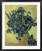 Framed Irises(1890)