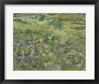 Framed Long Grass With Butterflies