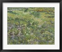 Framed Long Grass With Butterflies