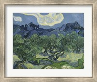 Framed Olive Trees