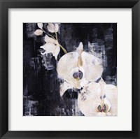 Framed Shadow Orchids I