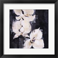 Shadow Orchids II Framed Print