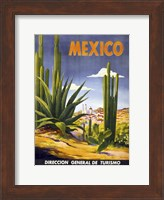 Framed Mexico Cactus