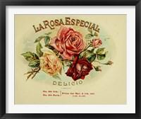 Framed La Rosa