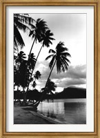 Framed Dreaming of the South Seas, Society Islands, French Polynesia