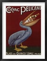 Framed Pelicano