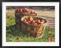 Framed Apple Bushels