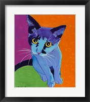 Framed Kitten Blue