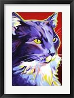 Framed Cat Kelsier