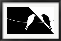 Framed Black and White Birds