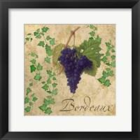 Bordeaux Framed Print