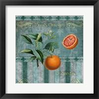 Fresh Oranges Framed Print