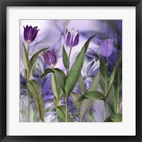 Framed Purple Dream II