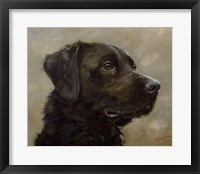Framed Black Lab 7
