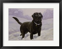 Framed Black Lab 10