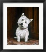 Framed Westie 2