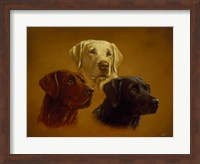 Framed Portrait of Three