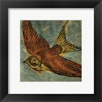 Bird Collage No 1 Framed Print