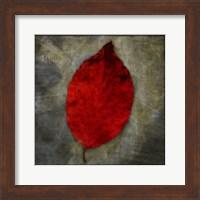 Framed Red Dogwood