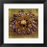 Framed Sea Urchin 2