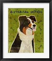 Framed Australian Shepherd