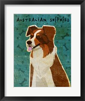 Framed Australian Shepherd Red