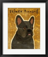 Framed French Bulldog