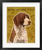 Framed German Shorthaired Pointer