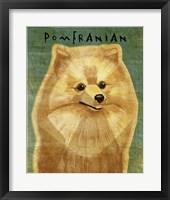 Framed Pomeranian