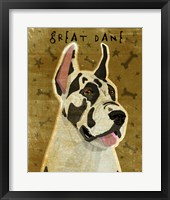 Framed Harlequin Great Dane 1