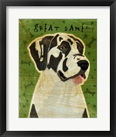Framed Harlequin Great Dane 2