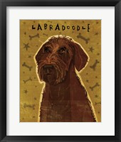 Framed Chocolate Labradoodle