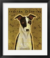 Framed Italian Greyhound - Black and White