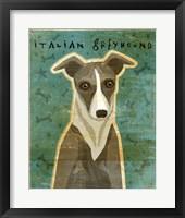 Framed Italian Greyhound - White and Grey