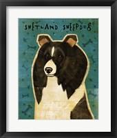 Framed Shetland Sheepdog - Black and White