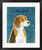 Framed Beagle