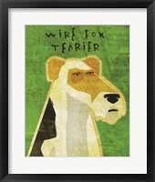 Framed Wire Fox Terrier