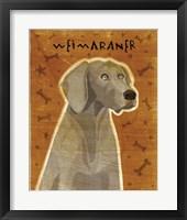 Framed Weimaraner