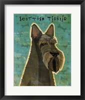 Framed Scottish Terrier