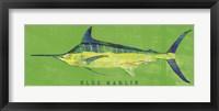 Blue Marlin Framed Print