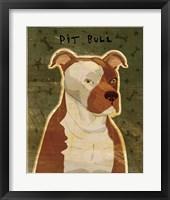 Framed Pit Bull