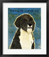 Framed Portuguese Water Dog