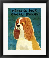 Framed Cavalier King Charles (Blenheim)