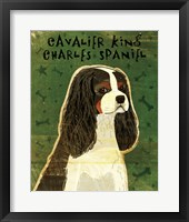 Framed Cavalier King Charles (tri-color)
